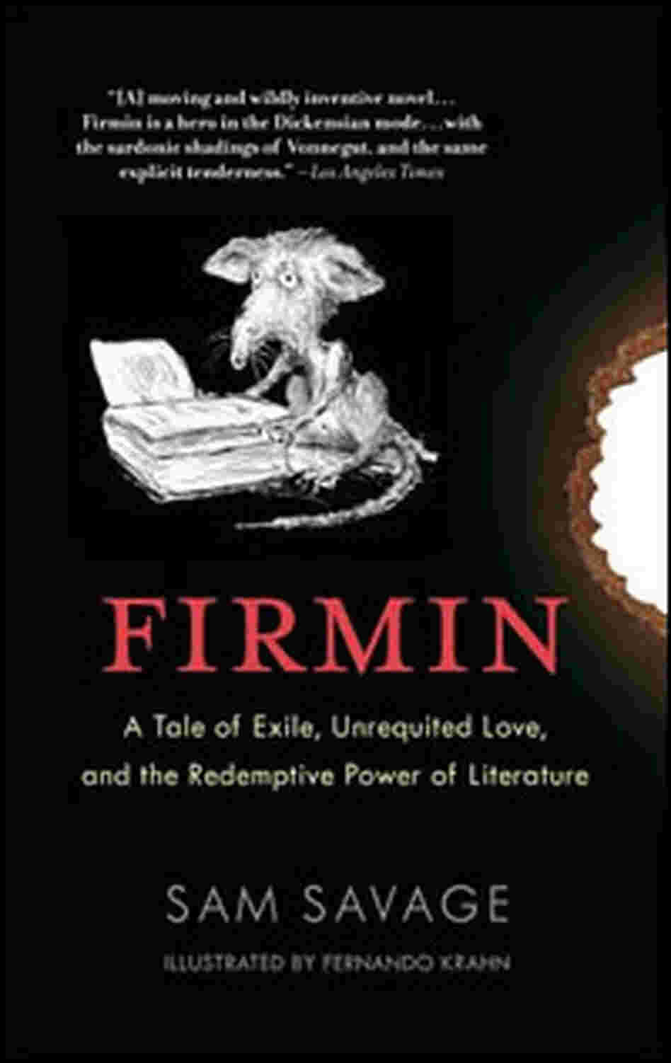 Sam Savage's 'Firmin'