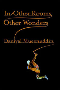 Cover: 'In Other Rooms, Other Wonders'