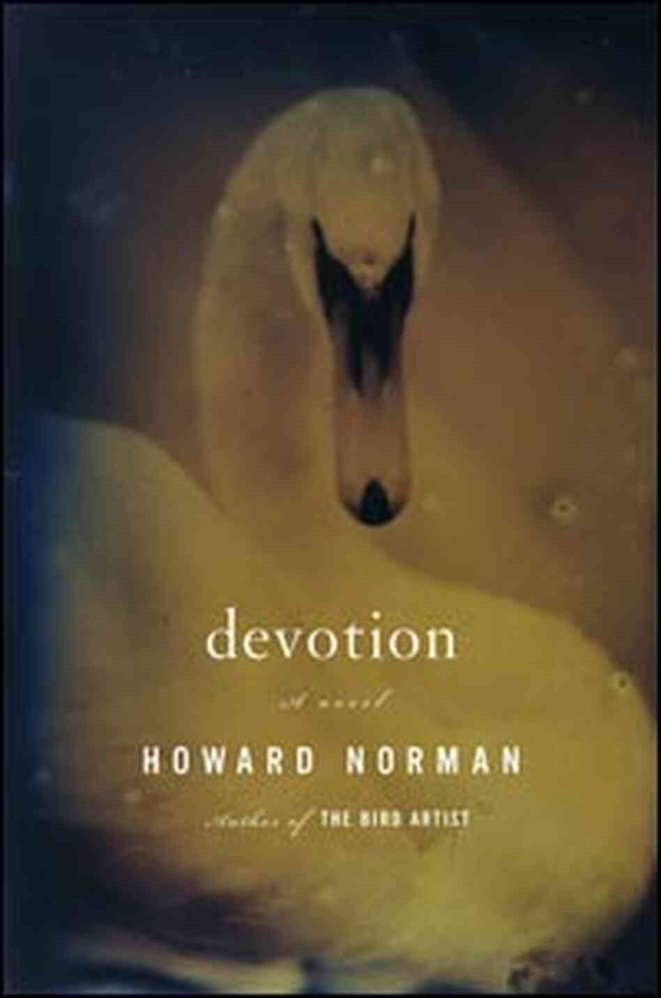 Book Cover: Devotion