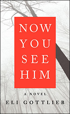 'Now You See Him' cover