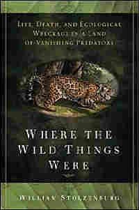 'Where the Wild Things Were'