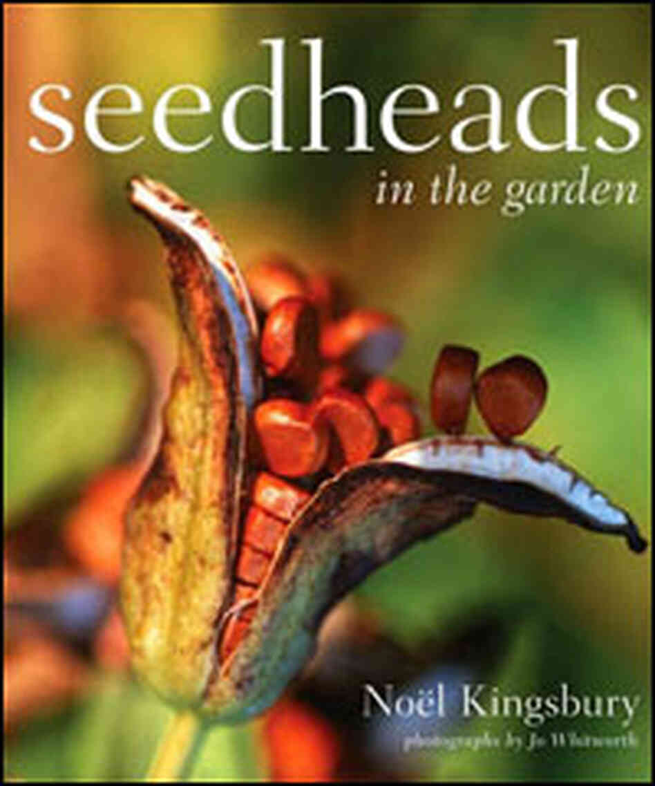 Seedheads in the Garden Cover