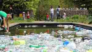 It's Not Just Trash, It's Art: Maryland Park Installation Highlights Pollution Crisis