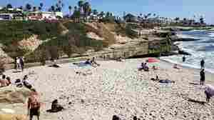 Beachgoers Can Soon Be Sunbathers