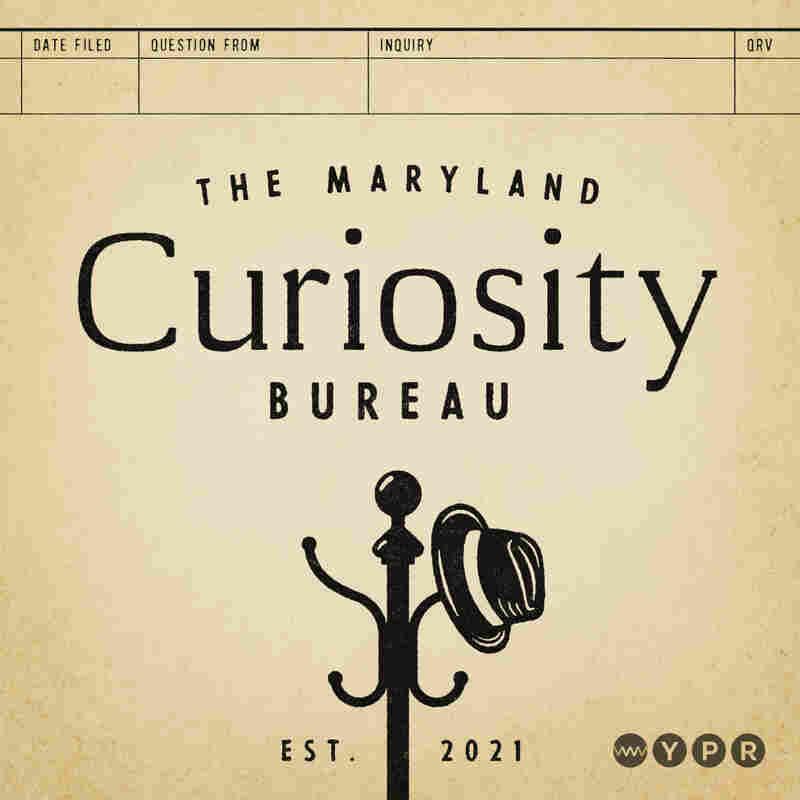 The Maryland Curiosity Bureau