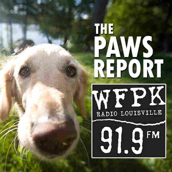 WFPK The Paws Report