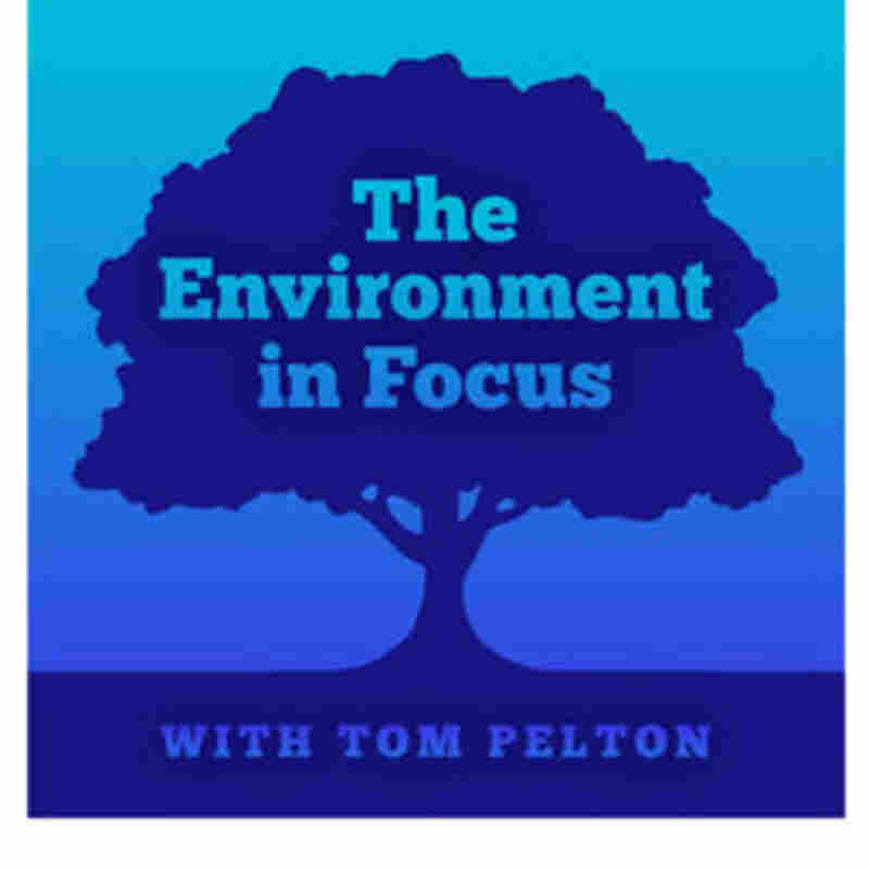The Environment in Focus on WYPR