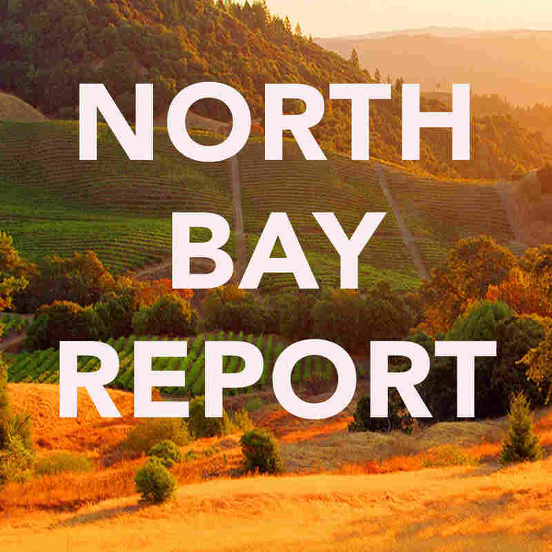 North Bay Report