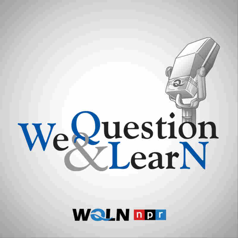 We Question & Learn