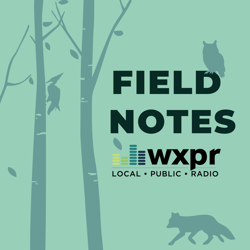 WXPR Field Notes
