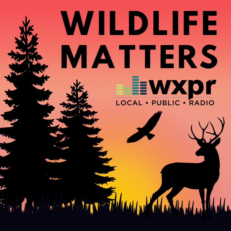 WXPR Wildlife Matters