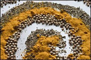 Indian Spice Spiral