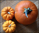 Three orange pumpkins are viewed from overhead