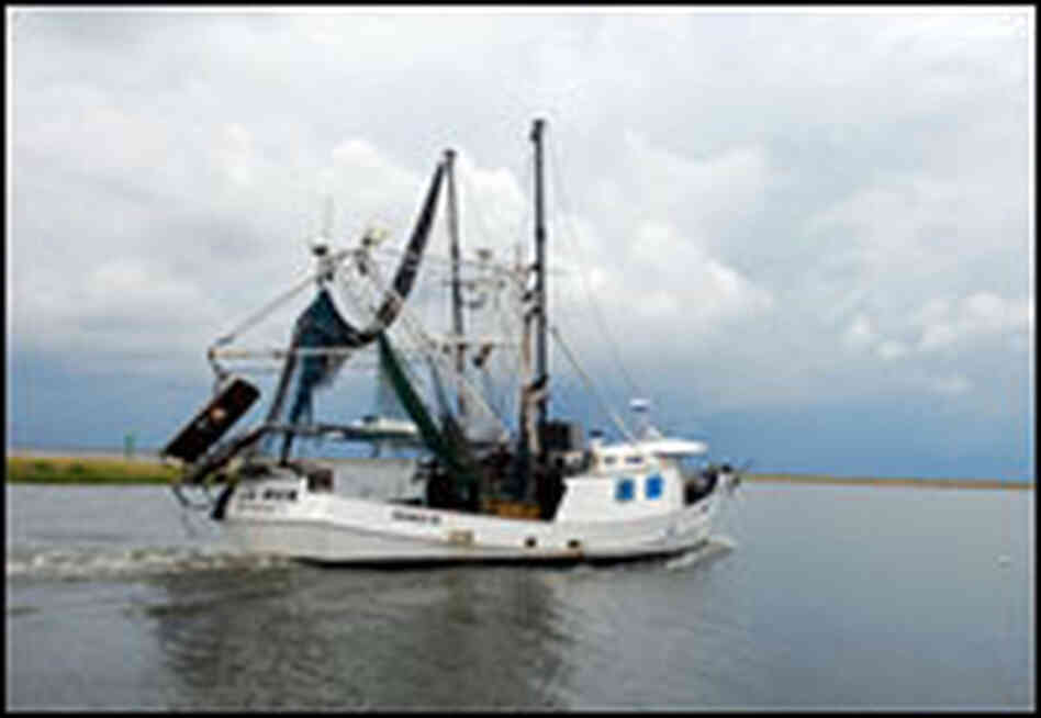 The Lil' Rick is a 56-foot steel trawler that Robin started building in 1974.