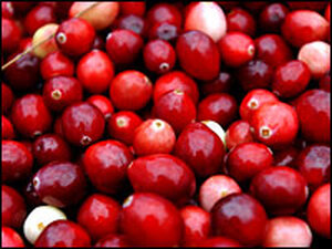 Fresh Cranberries: What's Thanksgiving without relish?
