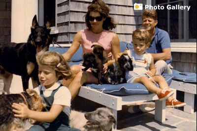 The Kennedys and dogs