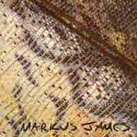 Markus James, Snakeskin Violin