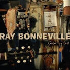 Ray Bonneville art