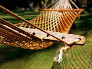 hammock; credit: iStockphoto.com