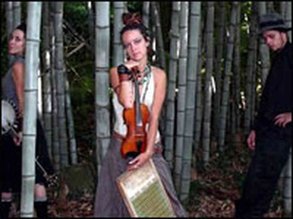 Members of the progressive Appalachian band, Appalachia Rising