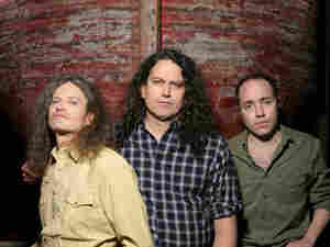 Meat Puppets 300