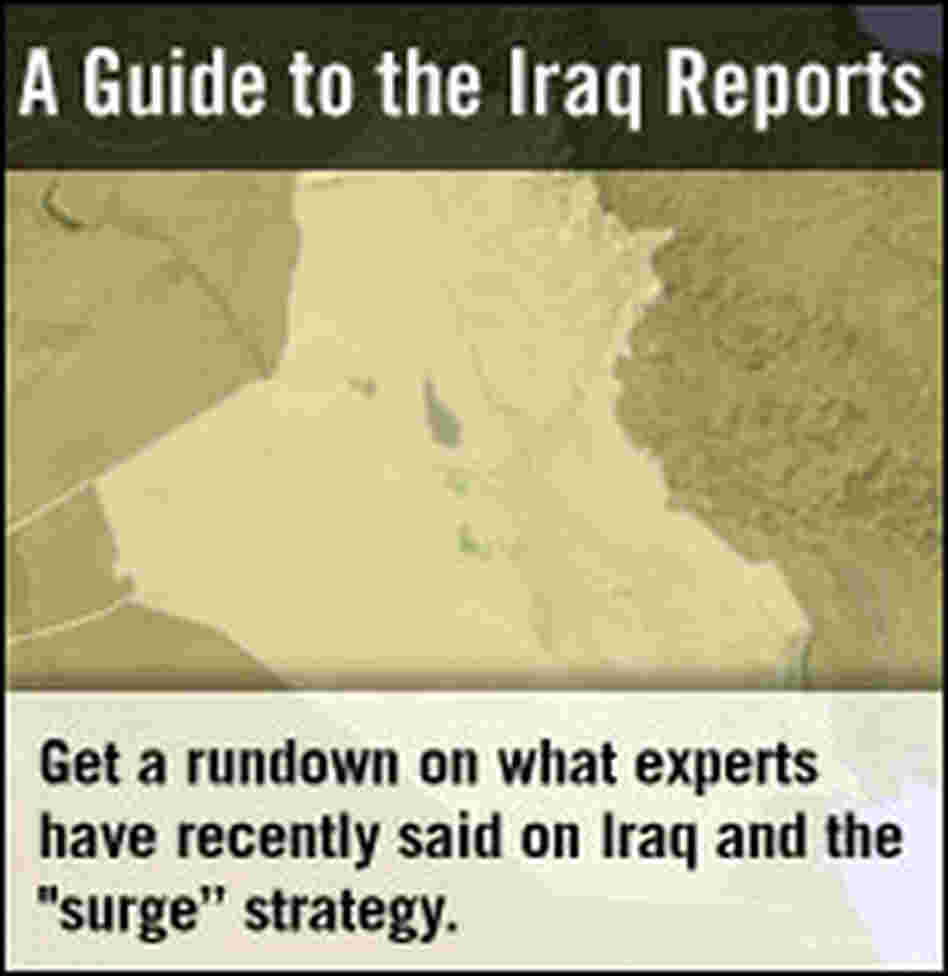Analysis: A Guide to the Iraq Reports