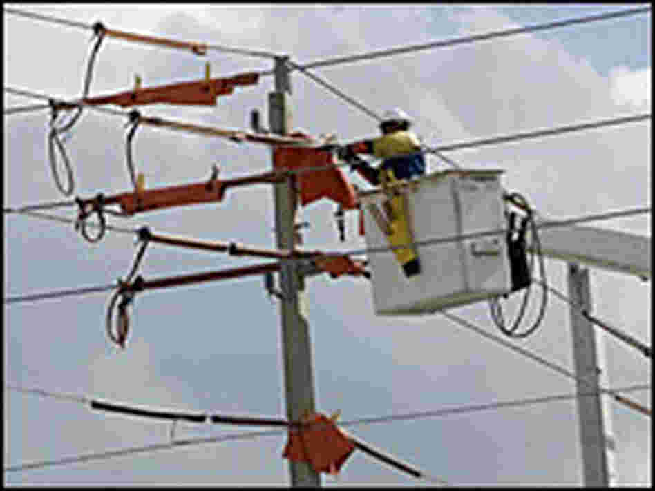 Repairing electrical lines in Florida