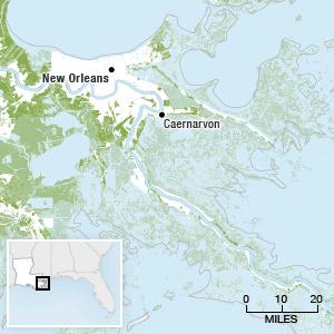 Map showing the Louisiana coastal wetlands