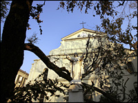 An uprooted live oak lies in front of the historic St. Louis Cathedral.