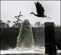 Floodwaters are pumped over the repaired Metairie outfall canal.