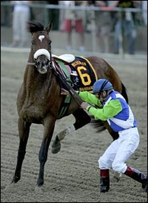 Jockey Edgar Prado tries to control Barbaro after pulling up.