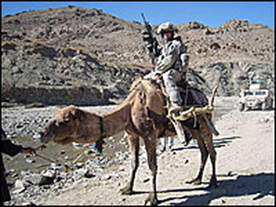 Army Staff Sgt. Michael Gabel sits on a camel in Afghanistan.