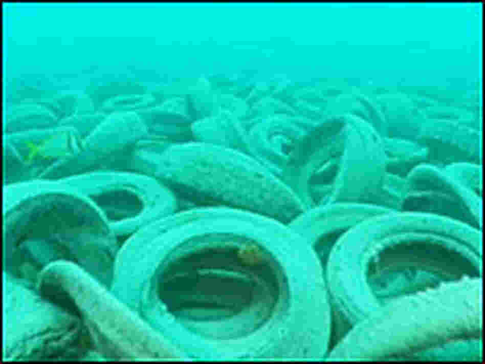 Tires on Ocean Floor