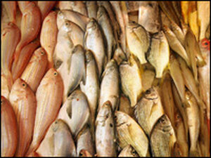 Chinese fish potentially harmful to humans.