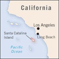 Catalina Island Fire Forces Evacuations : NPR on