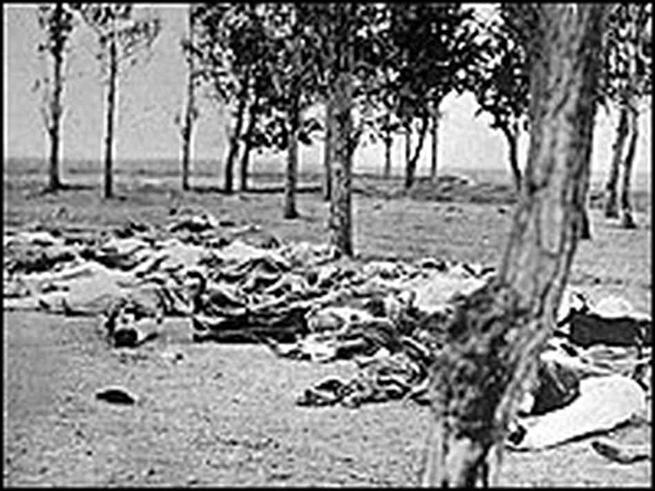 Armenian casualties of genocide