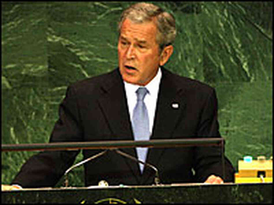 President George Bush addresses the United Nations Tuesday.