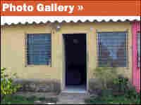 Julio Cuellar Photo Gallery