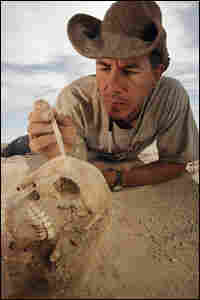 Paul Sereno stabilizes a nearly perfectly preserved skull during excavation.