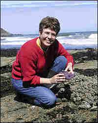 Marine biology professor Jane Lubchenco on the job in 2004 in Fogarty Creek, Ore.