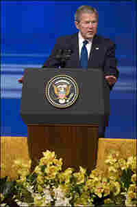 President Bush delivers his keynote speech on Middle East policy in Abu Dhabi.