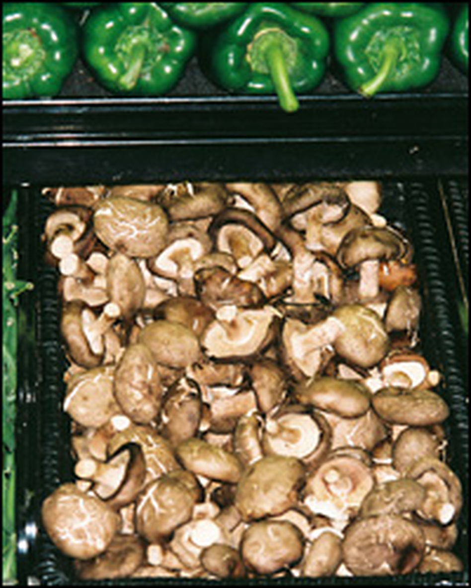 A supermarket bin of shiitake mushrooms gives no hint of the mushrooms' origin, leaving consumers in the dark. Click the image to see where they came from.