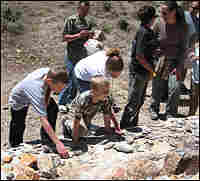 The Hazelwoods search for fossils.