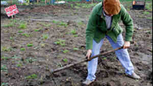 Sam Clark, chef and Manor Garden allotment holder.