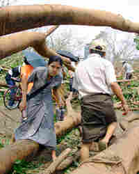 Locals make their way past a fallen tree following a devastating cyclone, in Ya