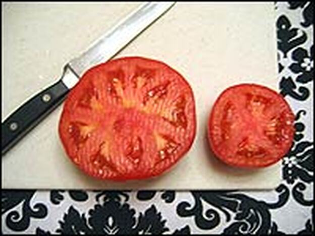 Supermarket beefsteak tomatoes, left, attained their large size by adding compartments. Ancestral fruits had either two or four compartments, like the fresh market variety tomato at right.