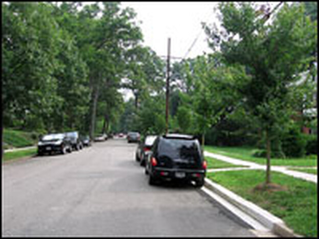 Today, Abramson's street has fewer big trees, and he says his shade garden suffers as a result.