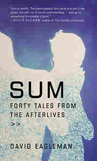 Cover of 'Sum: Forty Tales from the Afterlives'