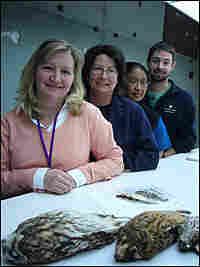 Carla Dove and her team at the Smithsonian's National Museum of Natural History.