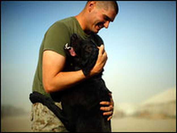 Lance Cpl. Steven Snider shares a hug with Lode, one of the Marines' working dogs trained to detect and locate improvised explosive devices. The Marines and their dogs will finish training at Camp Leatherneck, Afghanistan, before heading into Helmand province,  a Taliban stronghold.